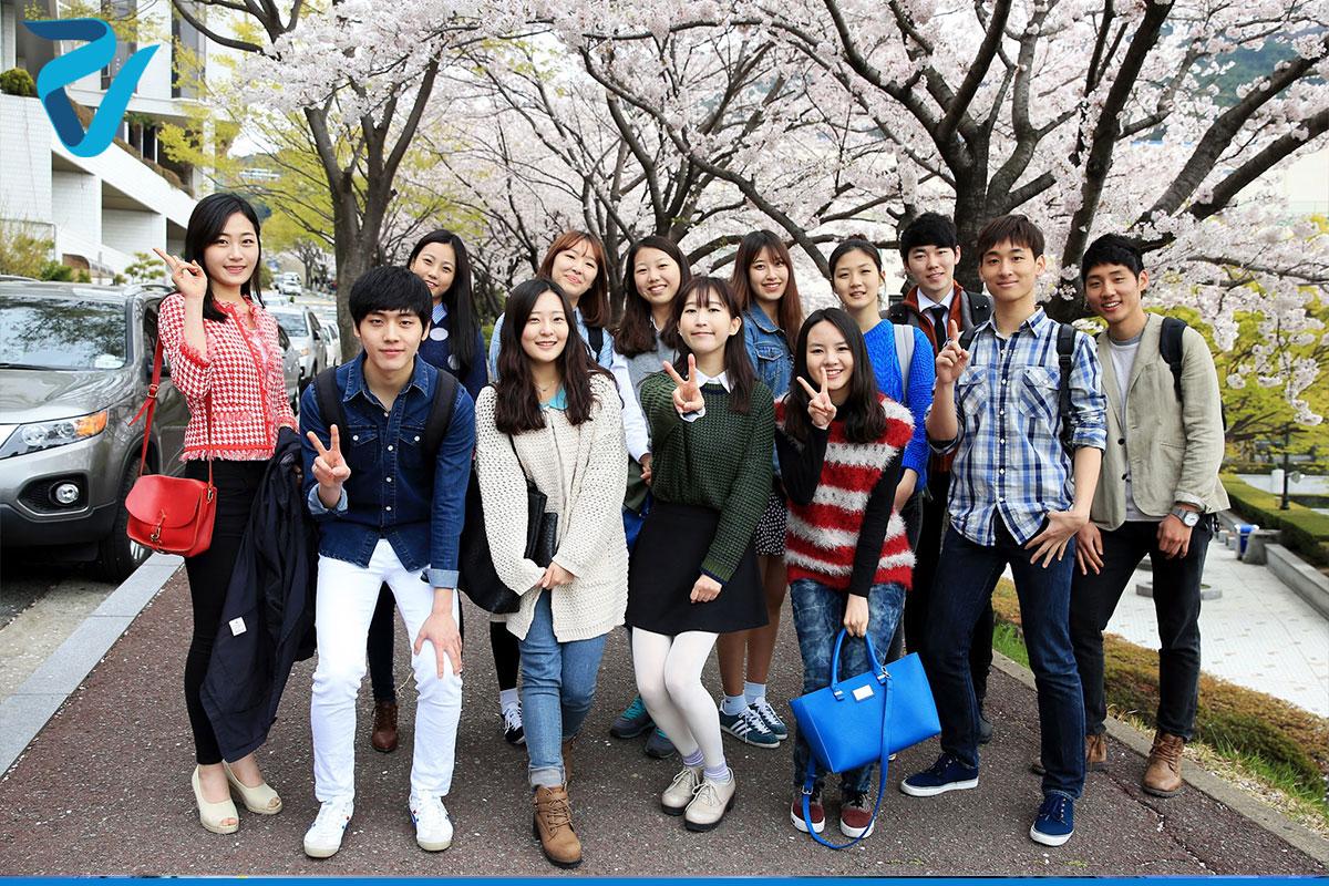 تحصیل در کره